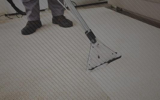 Dlaczego warto prać dywany?